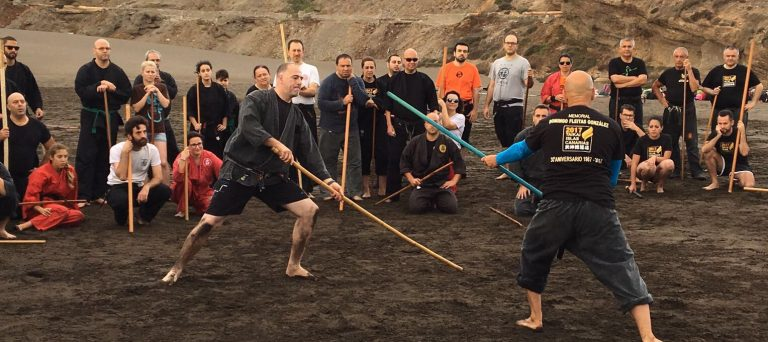 Entrenamiento de bujinkan en Taikai con Pedro Fleitas